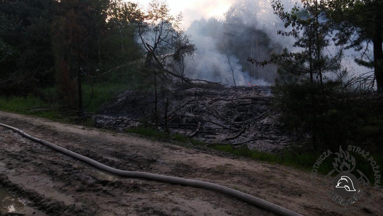 Pożar lasu we wsi Wólka Starzyńska